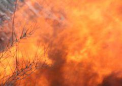 Śmiertelny w skutkach pożar w Kierzu Niedźwiedzim