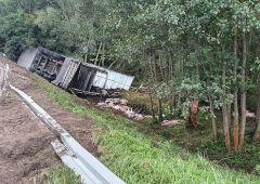 Tragiczny wypadek drogowy w miejscowości Płaczków