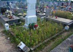 Kolejne zniszczenia na cmentarzu na Zachodnim