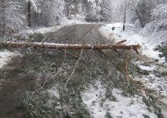 Interwencje skarżyskich strażaków po intensywnych opadach śniegu