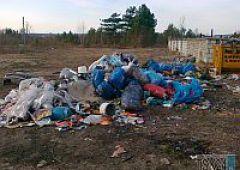 Śmieciowy problem