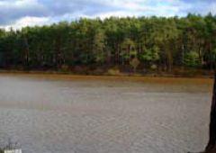 Brązowa woda w zalewie rejowskim